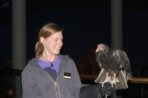 Suli and Lisa of the Draper Museum Raptor Experience