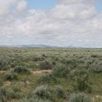 Center of the West joins Cody Country Chamber of Commerce for Spring into Yellowstone