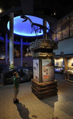 Draper Natural History Museum: Plains-Basin. NatHist-02CG