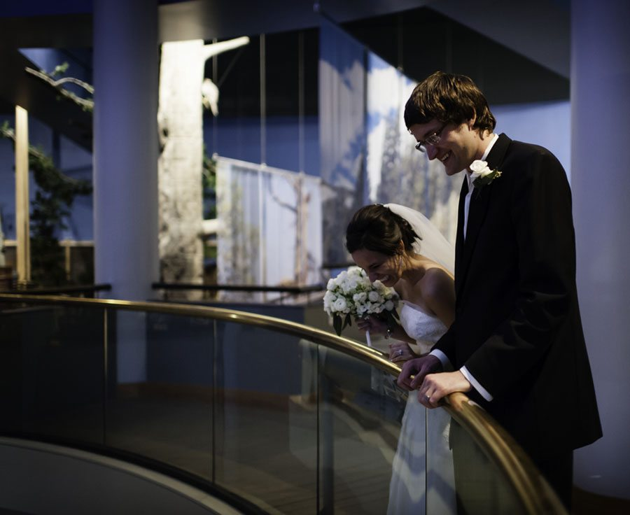 A bride and groom view their reception from the overlook in the Draper Natural History Museum