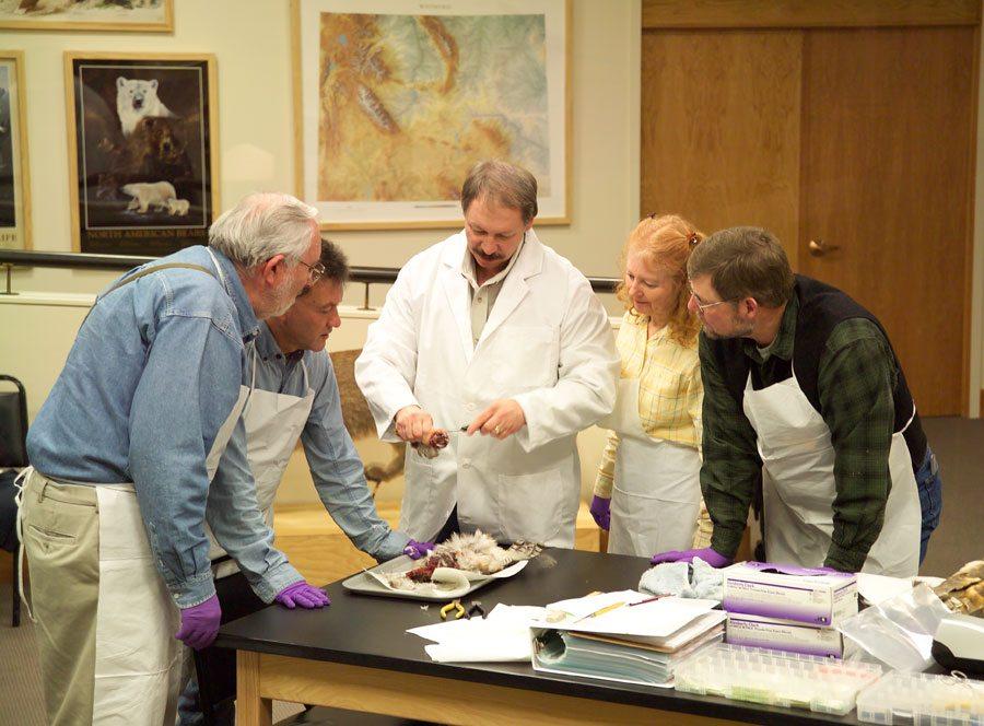 Volunteers assist the curator in the Draper Lab