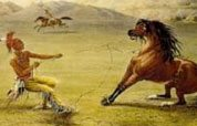 Unbroken Spirit: The Wild Horse in the American Landscape
