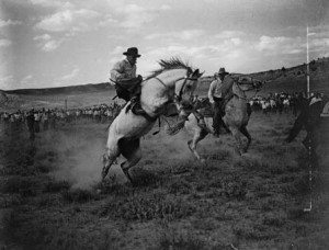 Cecil McMillin rides bucking horse. Charles Belden Collection. PN.67.597
