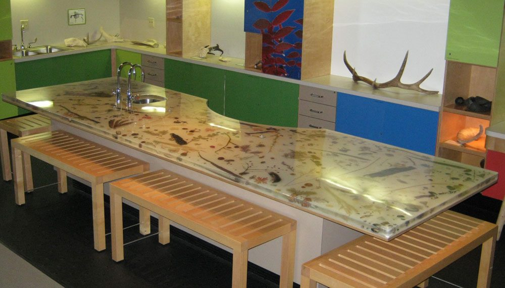 Nature table in Seasons of Discovery.