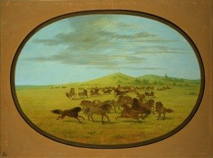 "George Catlin's ""Wild Horses at Play in the Prairies of the Platte."" 30.86"