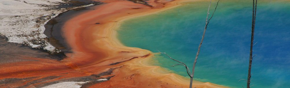 Grand Prismatic Spring in Yellowstone National Park. Photo by Nancy McClure.