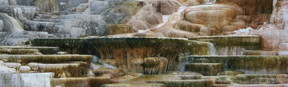 Travertine terraces at Mammoth Hot Springs in Yellowstone National Park. Photo by Nancy McClure.