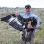 Greater Yellowstone Ecosystem Fieldnotes