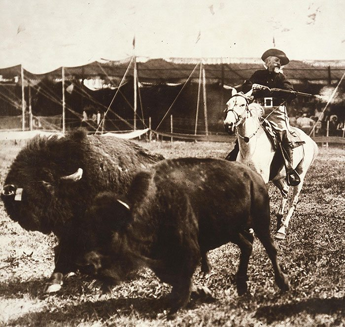 As in his days of hunting buffalo for the Kansas Pacific Railroad, Buffalo Bill demonstrated buffalo hunting in the Wild West arena with live, running buffalo, ca. 1905. MS 6 William F. Cody Collection, McCracken Research Library. P.69.1002