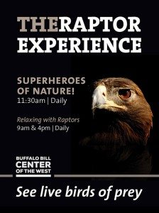 Raptors: Superheroes of Nature! @ Braun Garden, Buffalo Bill Center of the West | Cody | Wyoming | United States