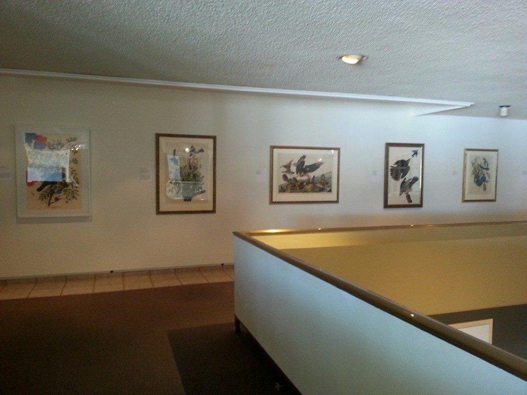 Audubon and Friends exhibition