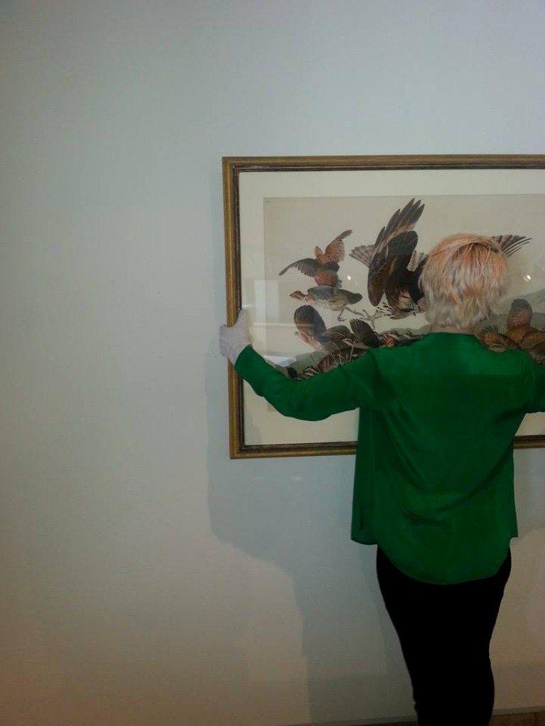 Deinstalling Audubon and Friends