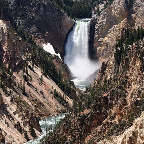 Lower Falls of the Yellowstone. Nancy McClure photo.