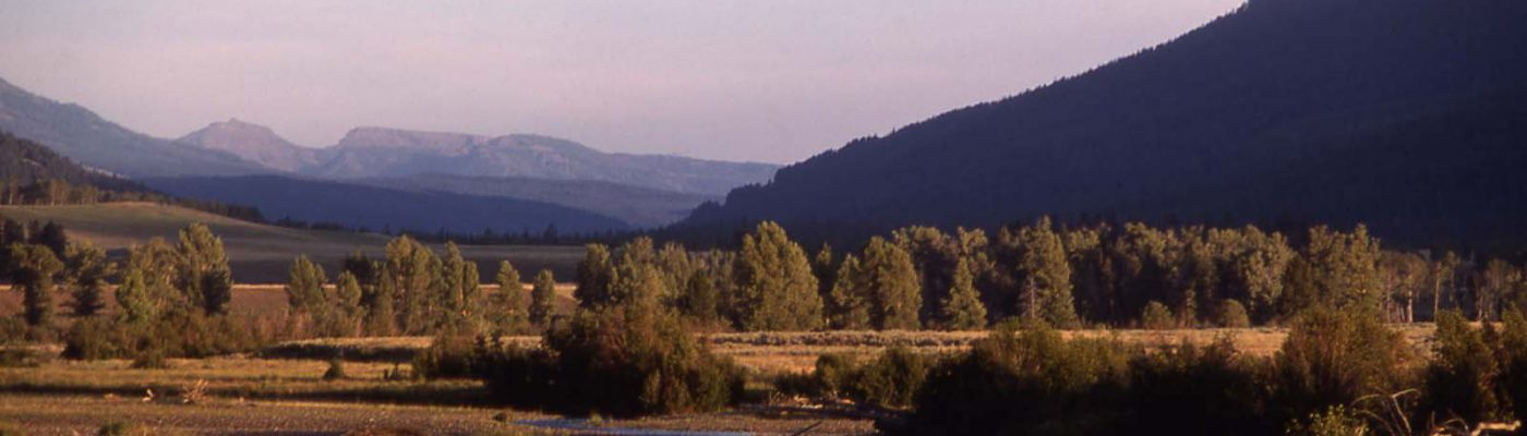 Lamar Valley in Yellowstone National Park. Photo courtesy National Park Service.