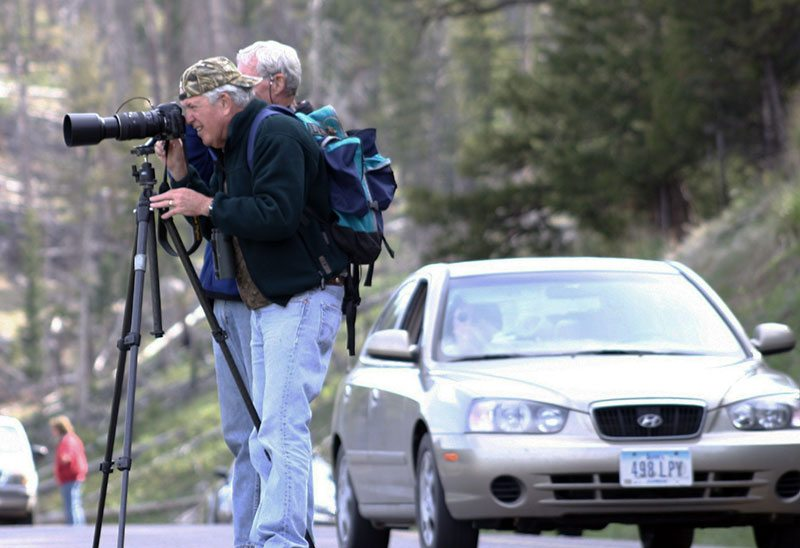 Greater Yellowstone Wildlife Journey participant Jack Ferguson. C.R. Preston photo.