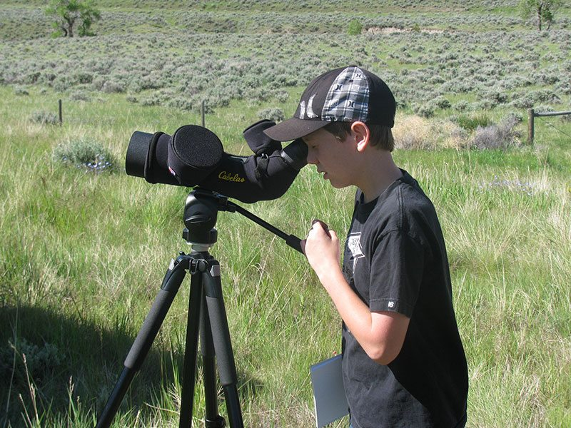 """A Discovery Field Trip participant uses a spotting scope to get a close-up view of a golden eagle during """"An Eye on Eagles."""""""