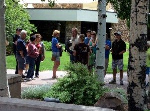 Crowd gathered around woman with peregrine falcon.