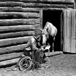 A Treasure from Our West: Charles Belden photograph of cowboy Oli Watts reading to his horse.