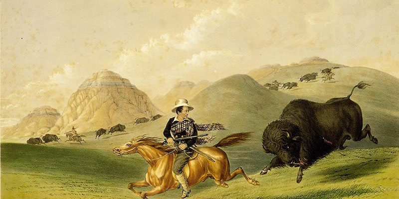 "George Catlin (1796 - 1872). ""Buffalo Hunt, Chasing Back,"" 1844. Hand-colored lithograph, 17 3/4 x 13 in. Gift of Mrs. Sydney T. Miller. 21.74.12"