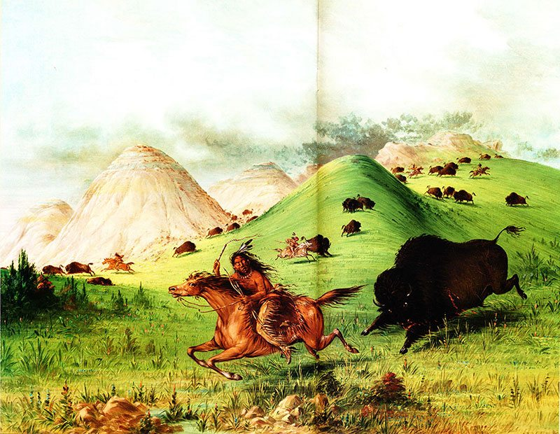 """George Catlin (1796-1872). """"American Buffalo Hunt, Chasing Back,"""" 1846. Oil on canvas, 25 1/2 x 32 in. Gilcrease Museum, Tulsa, Oklahoma."""