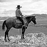 2,500 photographs taken by Wyoming photographer Charles Belden, documenting ranch life in Northwest Wyoming during the first half of the twentieth century. Project was funded by a generous grant from the Carol McMurry Library Donor Advised Endowment Fund, through the Wyoming Community Foundation. Thank you!