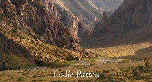 "Book cover: Leslie Patten's ""The Wild Excellence"""