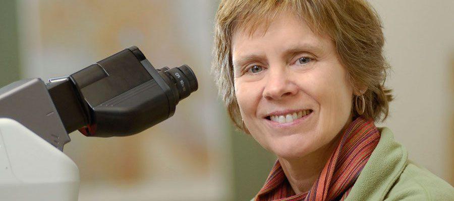 Dr. Kathy Whitlock.