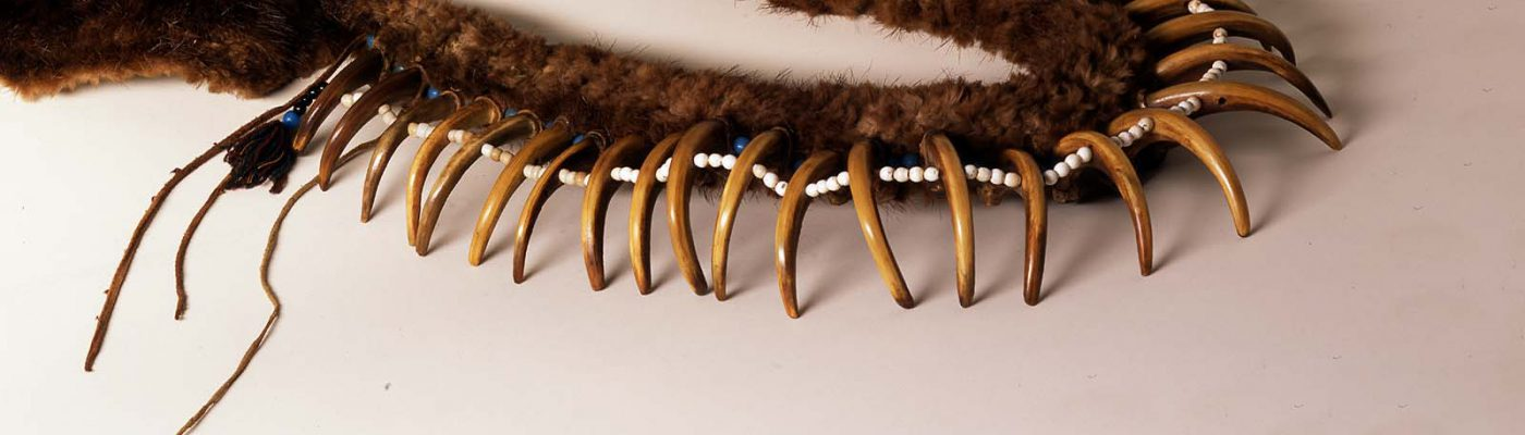 Grizzly bear claw necklace. Paul Dyck Plains Indian Buffalo Culture Collection. Acquired through the generosity of the Dyck family and additional gifts of the Nielson Family and the Estate of Margaret S. Coe. NA.203.1413