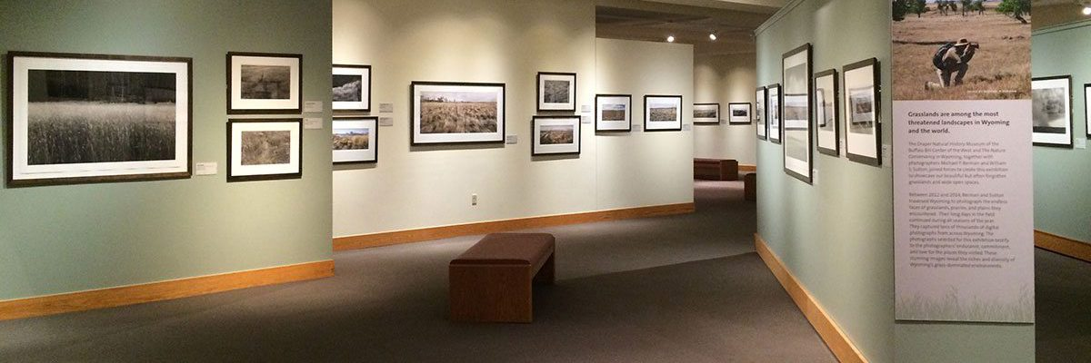 Wyoming Grasslands in the John Bunker Sands Photography Gallery