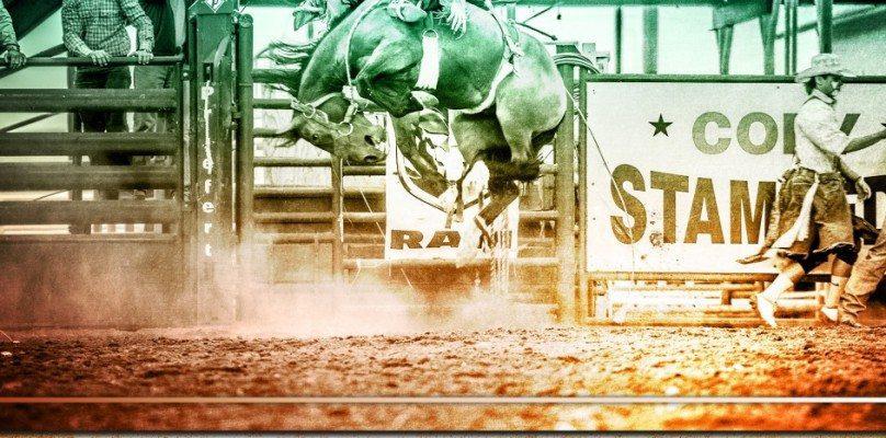 """Lew Freedman's """"Cody Rodeo"""""""