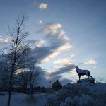 """Last of the Buffalo"" in the winter, by Michael Coleman. 18.09"