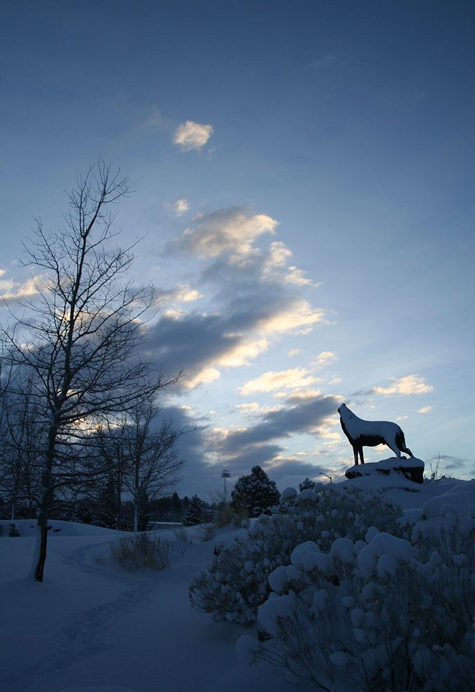 "The Center's winter hours: Closed Mon–Wed; open Thu–Sun. ""Last of the Buffalo"" in the winter, by Michael Coleman. 18.09"