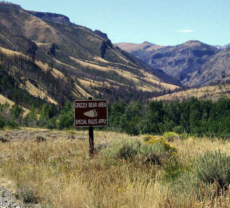 """The """"Grizzly Bear Area"""" sign in the Upper Greybull River Valley was an ironic twist for the two professors trailing a bear named Wahb. Photo courtesy Jeremy Johnston."""