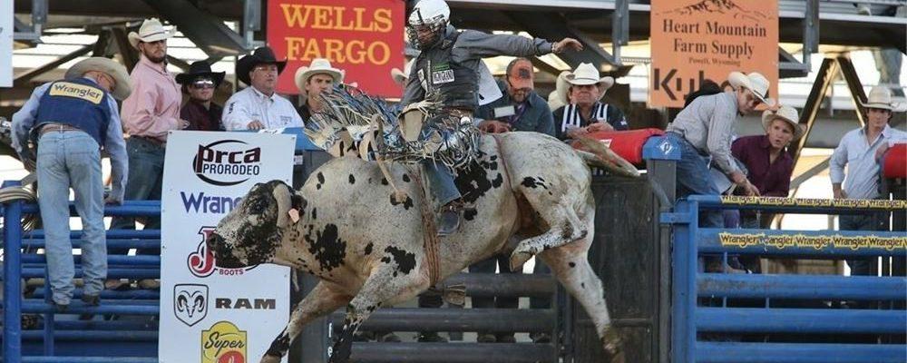 Cody Night Rodeo Action