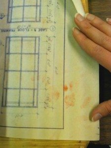 pawprints on blueprint