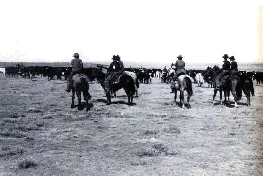 "N.C. Wyeth (1882-1945). ""Hashknife,"" October 1904. Photograph courtesy Colorado Historical Society. F26,269"