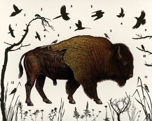 "James Prosek's ""American Bison (Wyoming),"" 2014. Oil, acrylic, and mixed media on wood panel."