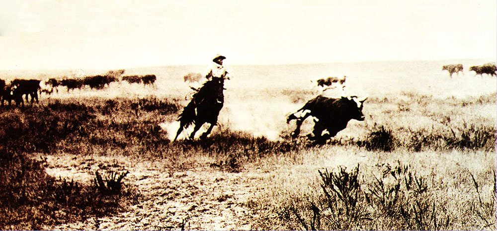 L.A. Huffman (1854-1931). Cutting Out a Steer, undated. MS 100 L.A. Huffman Collection.