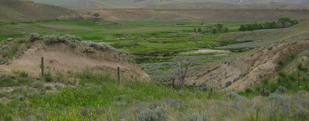 Dennis Knight, PhD, talks about The Ecology of Wyoming Landscapes at the May 5 Lunchtime Expedition at the Buffalo Bill Center of the West. A view outside Cody.