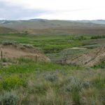 May 5 Lunchtime Expedition explores two decades of change in the ecology of Wyoming landscapes
