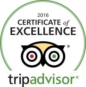 2016 TripAdvisor logo