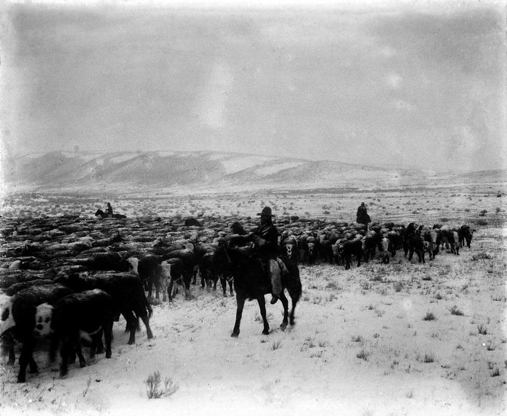 Charles J. Belden (1887-1966). A wintry day in the sagebrush country, c. 1920. MS 3 Charles Belden Collection, McCracken Research Library. P.67.599
