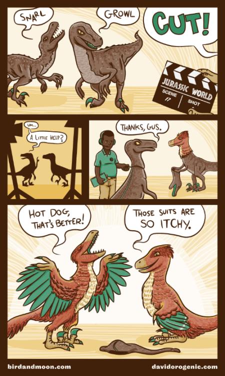 Velociraptor feathers!