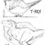 Birds are Dinosaurs, part 2!
