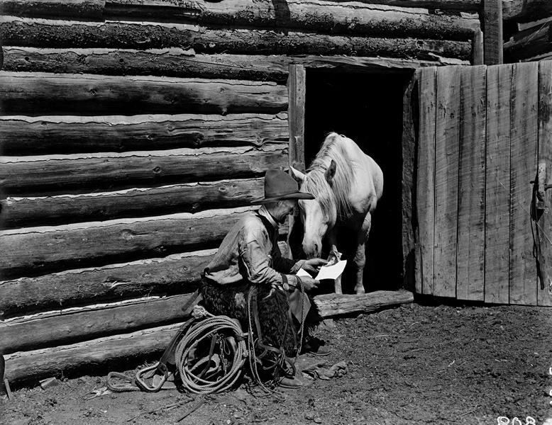 reading-to-a-horse-pn-67-31