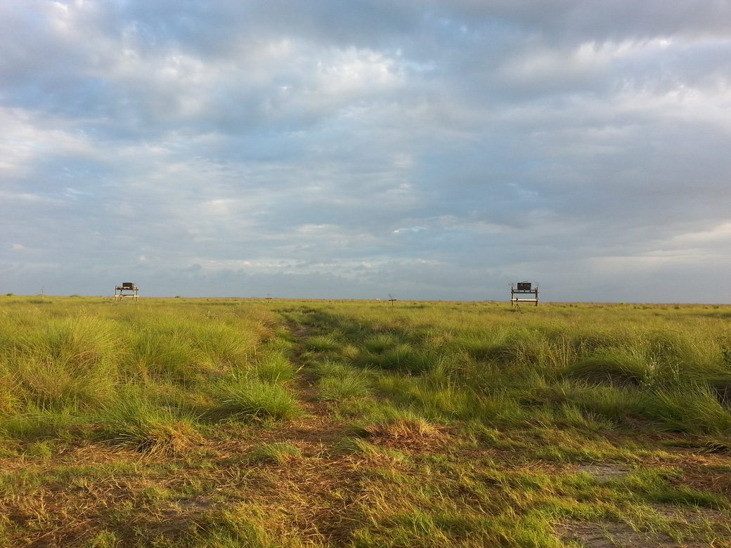 Two hack boxes sitting on raised platforms in a grassy prairie.