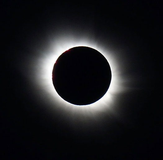 Natural Science Center Eclipse Viewing