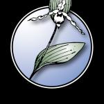 WYNDD logo