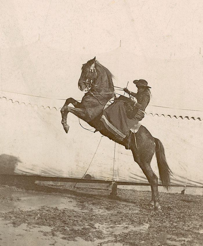 Annie Oakley riding side saddle on rearing horse. MS6 William F. Cody Collection. P.69.930