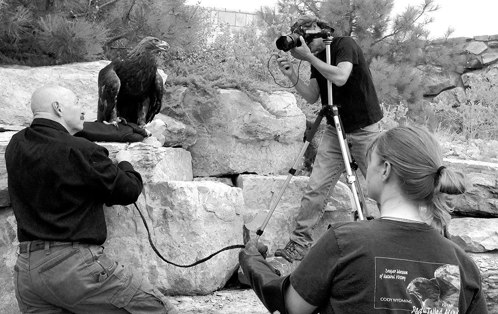 The Draper Natural History Museum's Chuck Preston and Melissa Hill assist Steve Horan as he photographs the Draper Museum Raptor Experience's Kateri, a golden eagle.